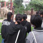 上野動物園に行ってきました ― 愛ほーむ・つばさホーム